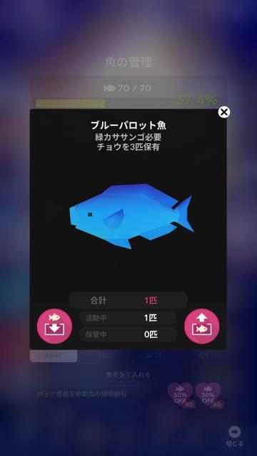 ブルーパロット魚